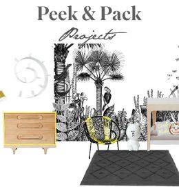 peek_projects_webiv