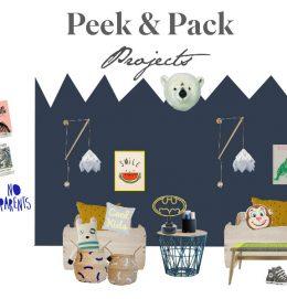 peek_projects_web_iii