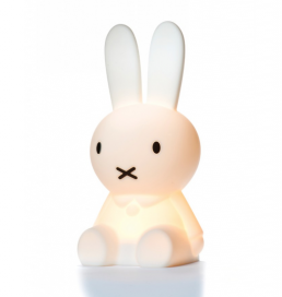 new_miffy_light_MRMARIA_III