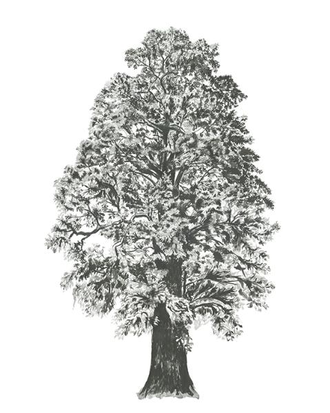 London Tree fabric sticker Sian Zeng