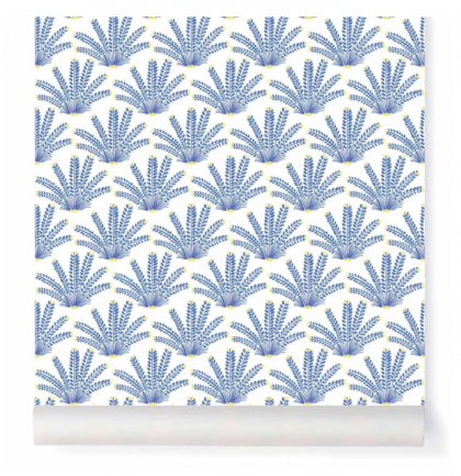 Maracas Wallpaper By Little Cabari